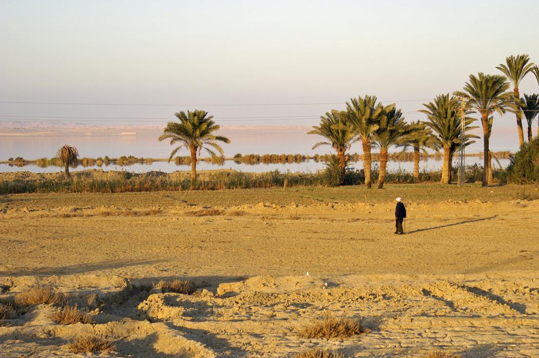 Landschaft in Ägypten © Larissa Bender